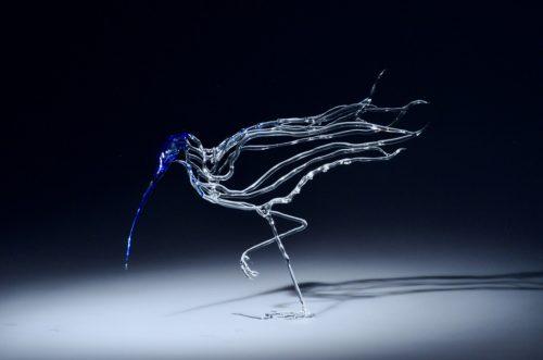 6- Dance of the Curlew, Katie spiers, 2019